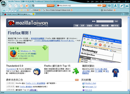 Netscape Browser 8 beta 使用畫面